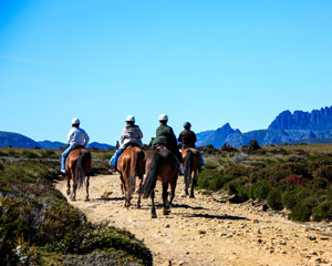 Cradle Mountain 1.5hr Horseback Ride - Speeler Plain Tasmania