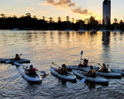 Guided 1.5hr Kayak Tour Of The Brisbane River (Night-time)