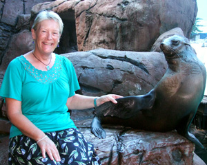 Seal Encounter & Adult Park Entry - Sunshine Coast MOTHER'S DAY SPECIAL OFFER 2-FOR-1