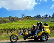 Barossa Uncut 3.5hr Trike Tour for 2 - Barossa Valley