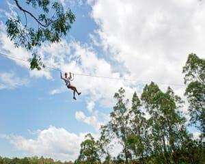 High Ropes Climbing Course With Flying Foxes Coffs