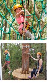 Treetop Zip LIne