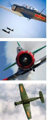 warbird_aerobatics